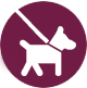 DogWalking_Icon