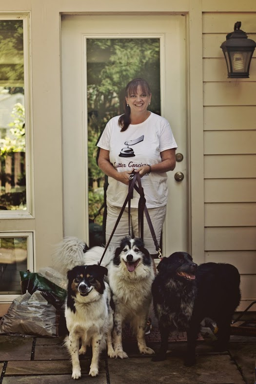 Northern Virginia dog walker taking three dogs for a walk